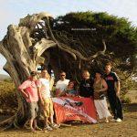 grupo posando con el árbol sabina