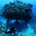 Luis Gorricho, fotografo submarino en el Precontinente