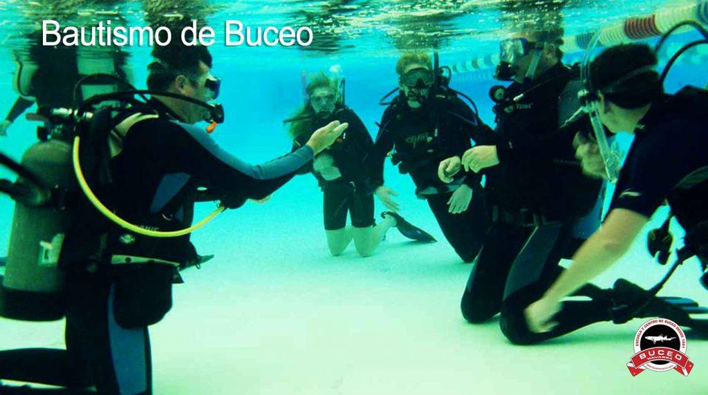 instructor con alumnos practicando los ejercicios de buceo